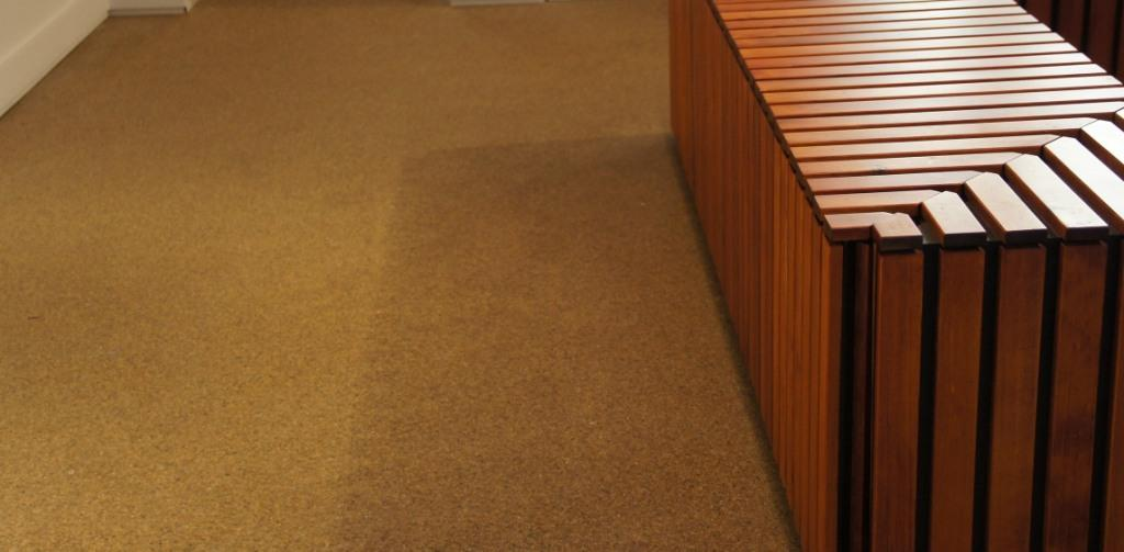 Carpet Cleaning Services Near Me T5M Edmonton