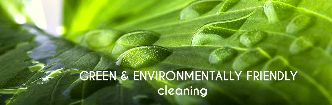 Environment Friendly Cleaning Services In Edmonton Alberta